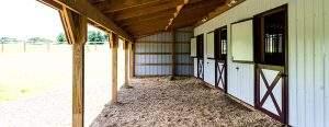 Equine Dutch Doors
