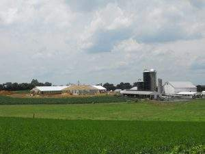 Mount Joy, PA Commercial and Ag Trusses (5)